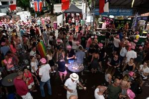 Roze Woensdag 2016 TEF1809 96